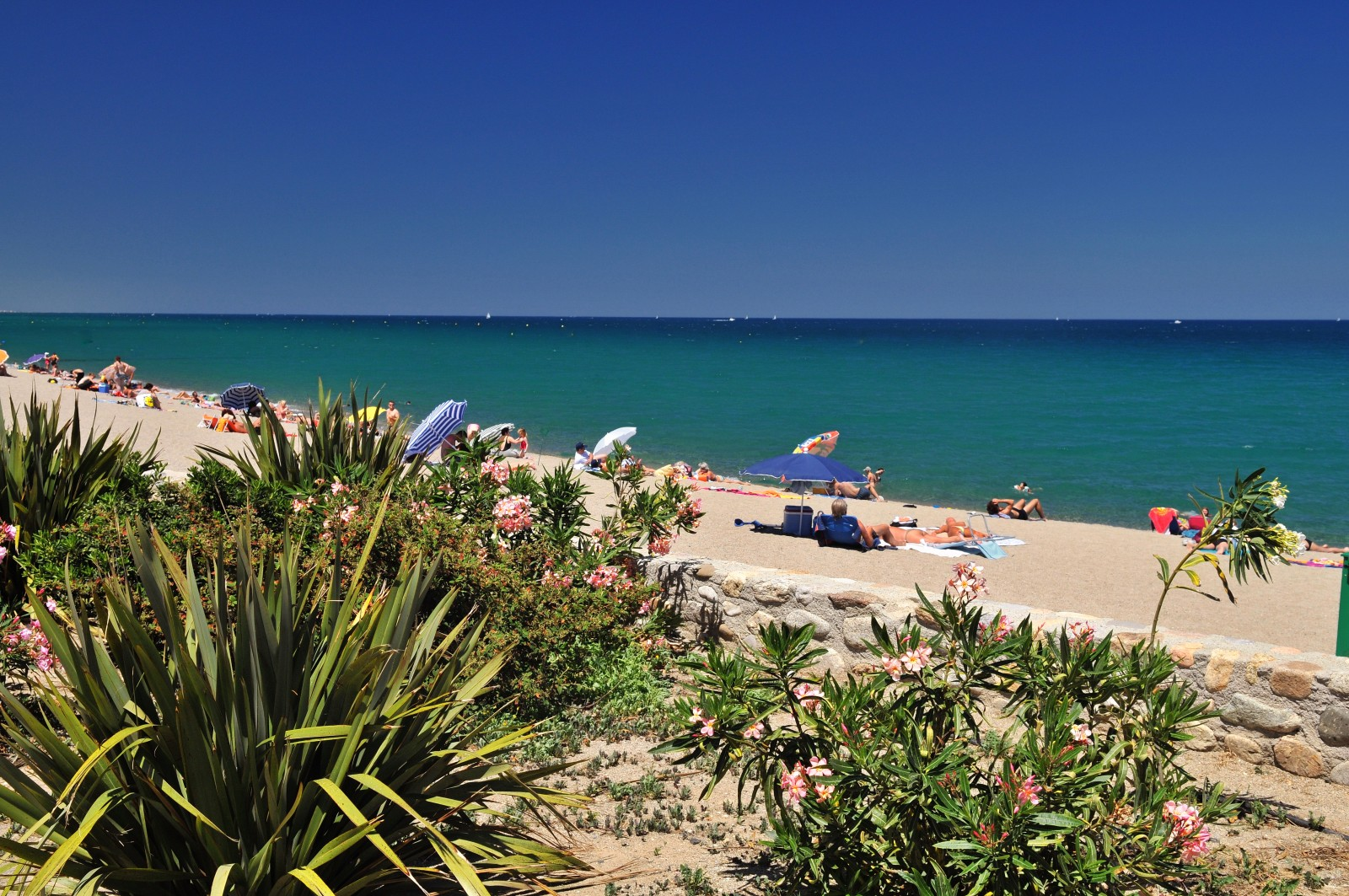 plage d argeles sur mer camping proche de perpignan