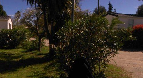 panoramique photo extérieur